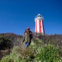 Discover Tasmania 8