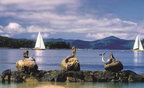 Things to see and do for Airlie Beach Holiday & Caravan Park